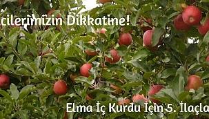 Elma İç Kurdu İçin 5. İlaçlama Zamanı Başladı